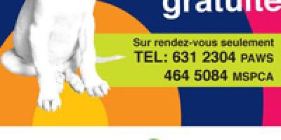 quinzaine-canine-du-2-au-16-aout