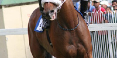 the-south-african-airways-cargo-duke-of-york-cup-ndash-listed-race-1600m