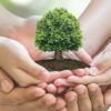journee-mondiale-de-l-environnement-lancement-des-activites-au-mgl-le-mardi-5-juin