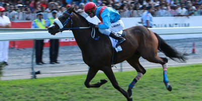 the-air-mauritius-maiden-cup-enaad-demeure-le-cheval-a-battre