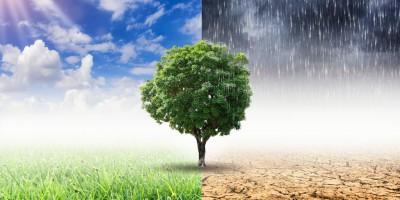 adapt-action-programme-national-workshop-focuses-on-climate-change-vulnerability-assessment