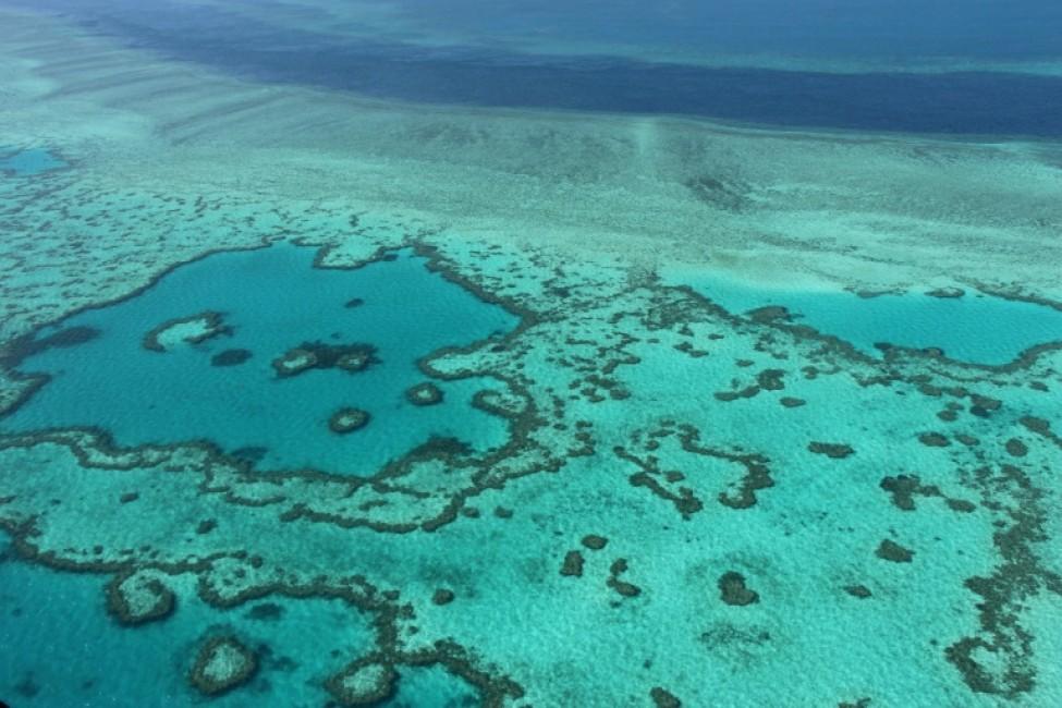 La Grande barrière de corail en Australie en 2014