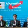 En un an, l'extrême droite a bouleversé la vie politique allemande