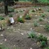 Photo des tombes des sept moines de Tibéhirine, enlevés et tués en 1996 en Algérie durant la guerre civile, prise le 28 novembre 2018