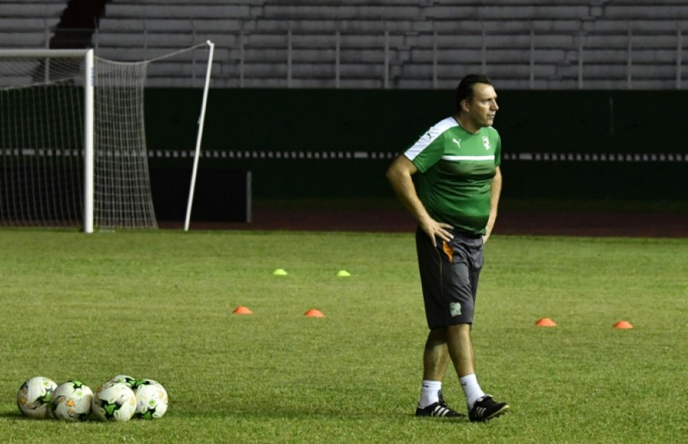Belgium\'s Marc Wilmots to coach Iran